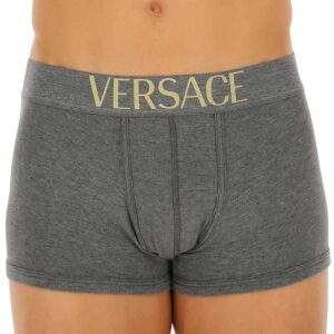 Versace boxer gray front